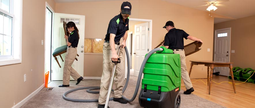 Starkville, MS cleaning services