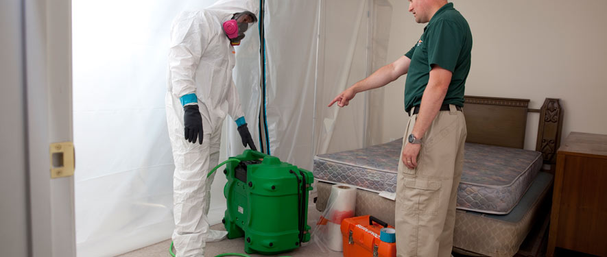 Starkville, MS mold removal process